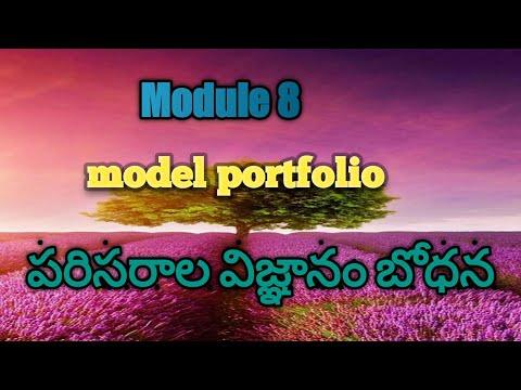 Module 8//Model portfolio activity//by my teaching ideas
