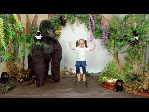 She's Brielle-iant, Gorillas!