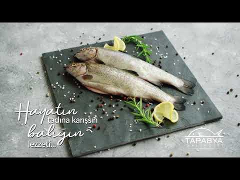 Tarabya Balıkçısı - Balık 4