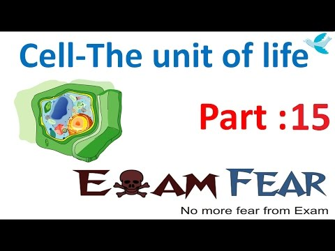 Biology Cell Unit of Life part 15 (Cytoplasm: Cytoplasmic streaming, functions) CBSE class 11 XI
