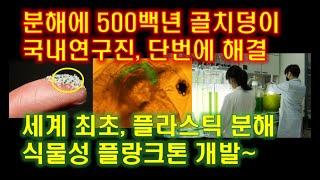 분해에 500백년 골치덩이 단번에 해결, 세계최초 플라…