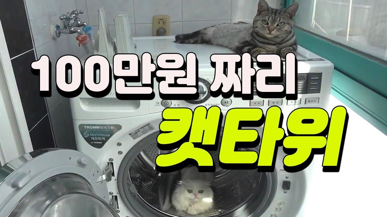 [고양이는 사랑입니다] 100만원짜리 캣타워