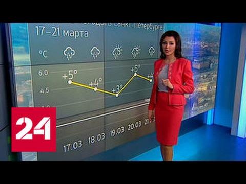"""""""Погода 24"""": Роcсию опять засыпает снегом"""