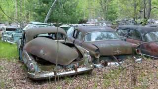 Abandoned cars in forgotten junkyard