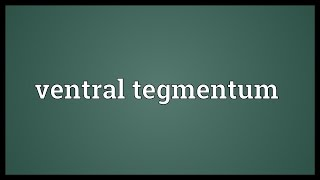 Ventral tegmentum Meaning
