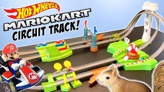 Hot Wheels Mario Kart Circuit Track Set Race Review 2019