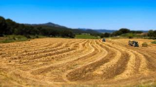 Timelapse Agriculture HD