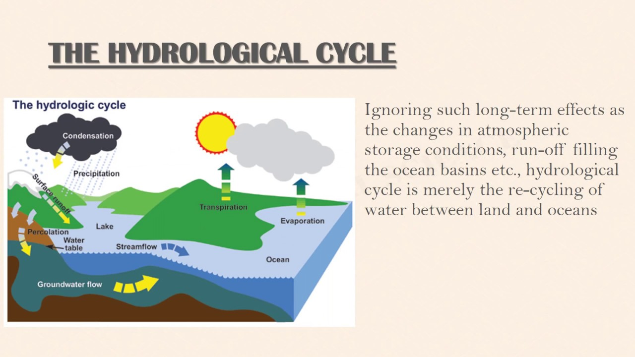 Forest and water resources PPT presentation Environmental