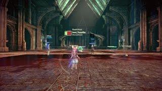 TERA: Sinestral Manor - Warrior DDS Gameplay