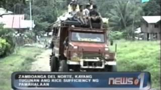 Zamboanga Del Norte, kayang tugunan ang rice sufficiency ng pamahalaan