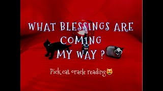 WHAT BLESSINGS ARE COMING MY WAY? / ORACLE/TAROT - PICK A CARD (CAT) READING 😻