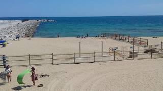 Пляж для собак снова открылся!