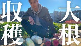 【キャンプ飯!?】とある東京の畑に行ってみた