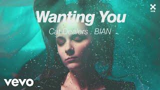 Cat Dealers, BIAN - Wanting You (Pseudo Video)