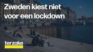 Geen Lockdown, Maakt Zweden Juiste Keuze In Strijd Tegen Corona? | Terzake