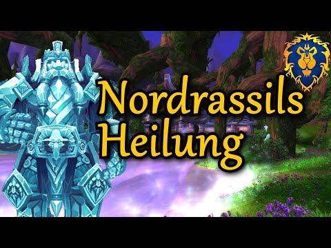 nordrassils-heilung---herz-von-azeroth-quest---wow-8.2-allianz-#25-1440p-60-fps