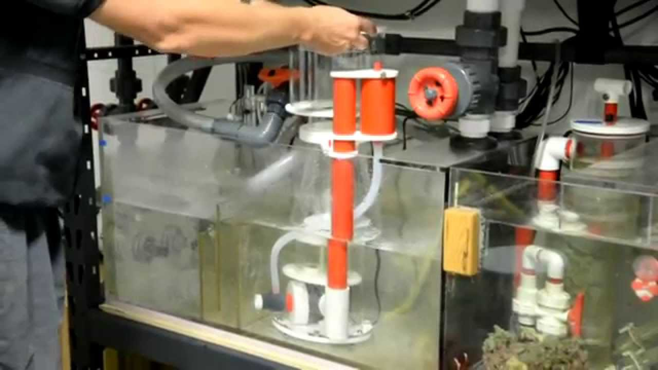 how to build a protein skimmer