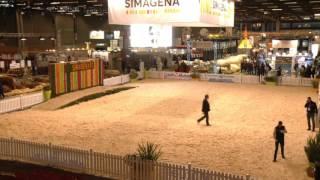 Simagena 2017 ( 26/02 )