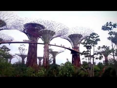 Singapore Tourism Board (STB) - Tourism50