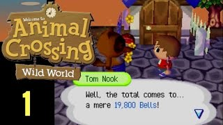 Animal Crossing Wild World Getting Started