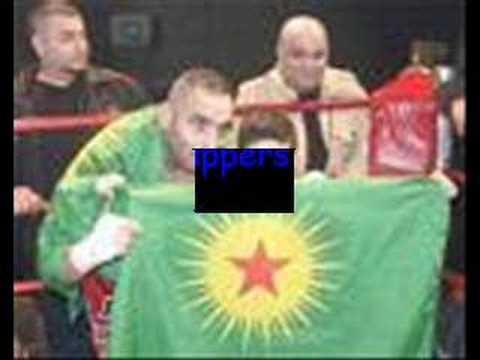 Kurdish stars