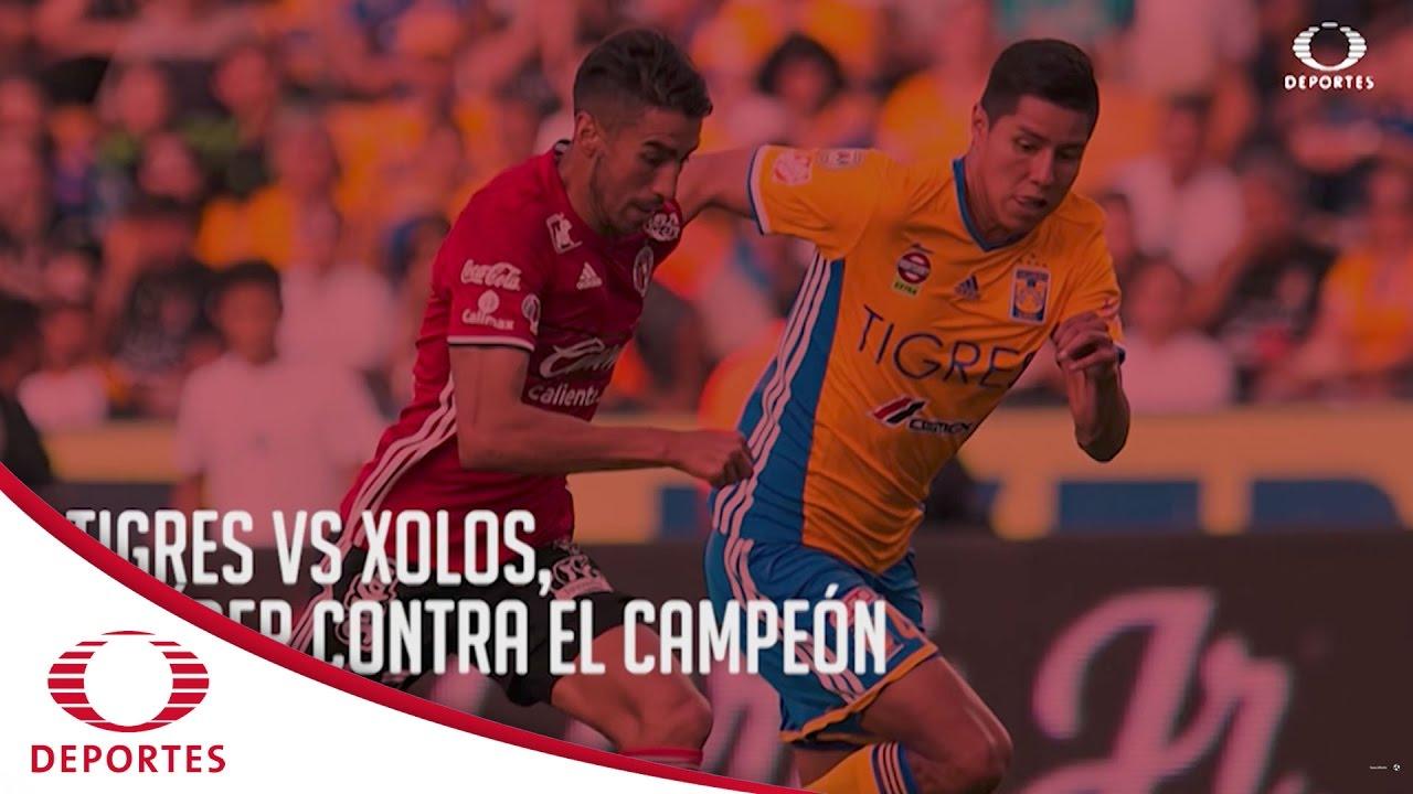 Tigres vs Xolos, el líder contra el campeón   Televisa Deportes