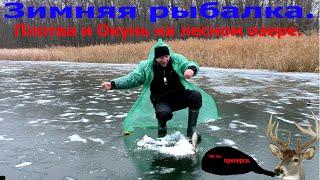 Зимняя рыбалка Плотва и Окунь на лесном озере