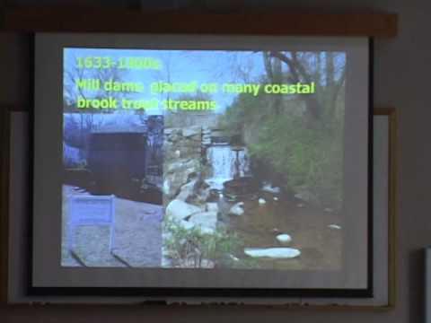 Mill Brook Restoration Fisheries Sampling / Water Study Report