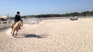 Hunter over fences 2