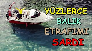 Tekne'de Midye Tava Ve Efsane Balık Sürüsü | 2 Günde 100 KM | Bu Sefer Doyduk