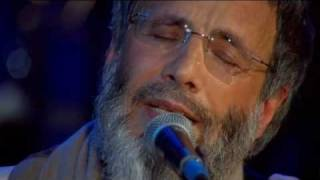 Yusuf - In The End (Live Yusuf's Cafe Session 2007) + Lyrics