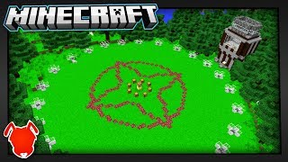 How the Minecraft Survival Games Changed My Life...