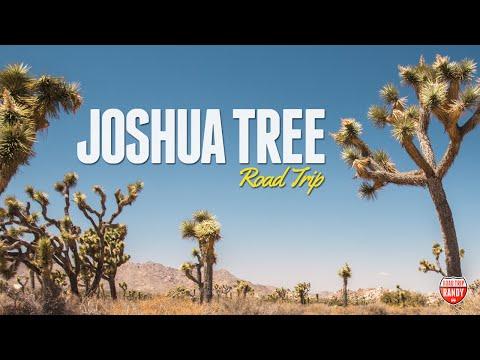 Joshua Tree Road Trip: 1 Day in Joshua Tree National Park