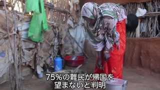 ケニア:ソマリア人難民への援助を継続 【国境なき医師団】
