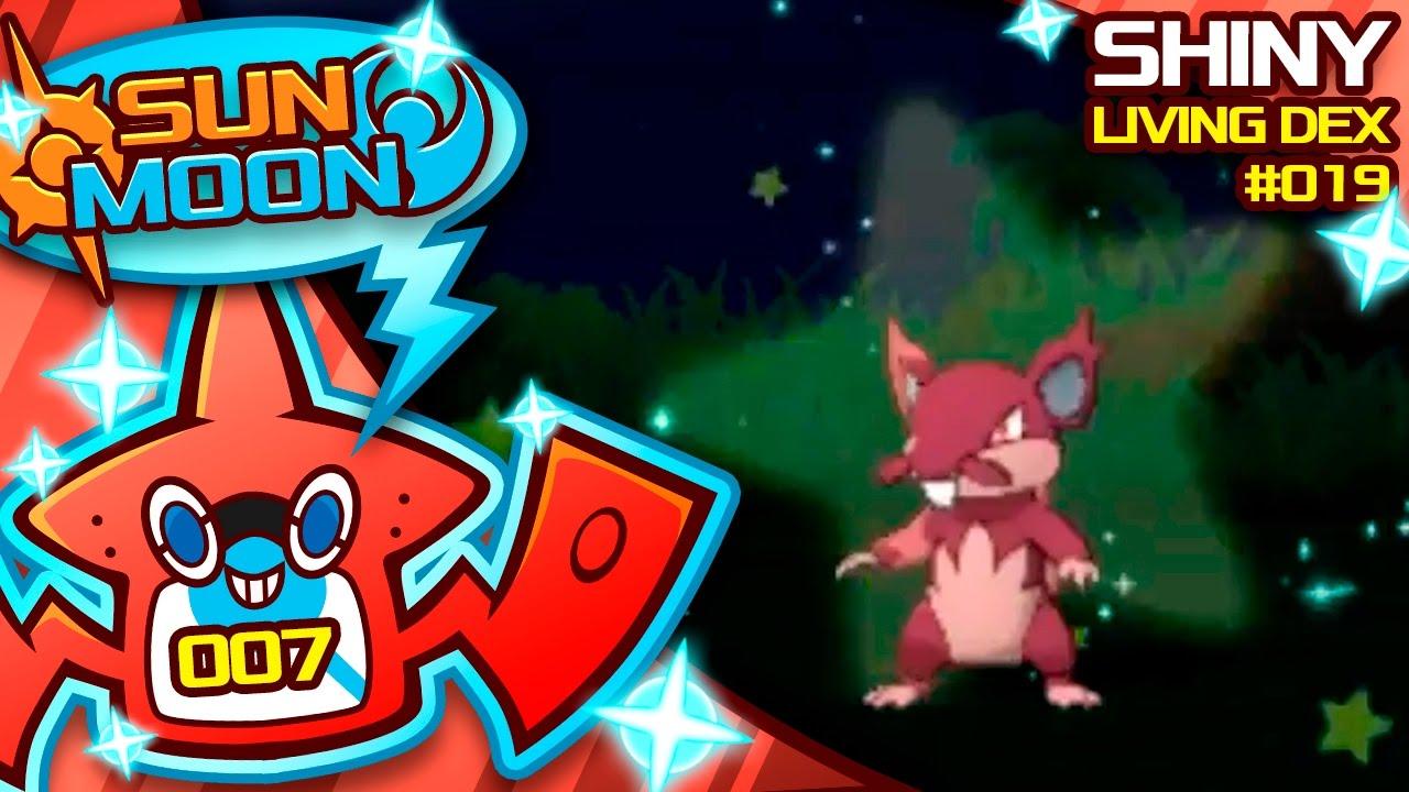 how to get non alolan rattata in pokemon sun