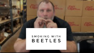 Smoking with Cigar Beetles