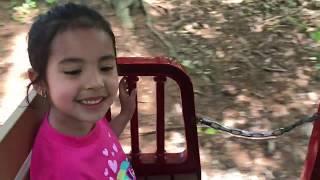 Lara's Pre K Field Trip at Turtle Back Zoo