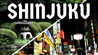 SHINJUKU (TOKYO, Japan) things to do 👉 GOLDEN GAI, KABUKICHO, GYOEN National Garden   #1 Vlog JAPÓN