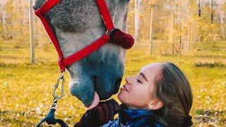 Окей - Тима Белорусских (конный клип)
