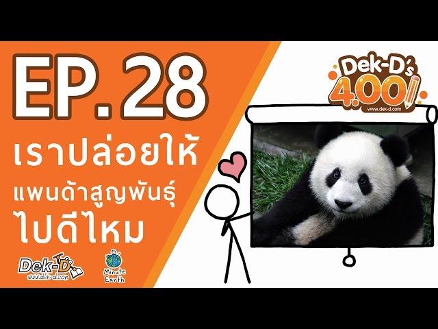 [DEK-D 4.00:EP.28] เราปล่อยให้แพนด้าสูญพันธุ์ไปดีไหม