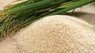 Очищение организма Рисовая диета для очищения организма