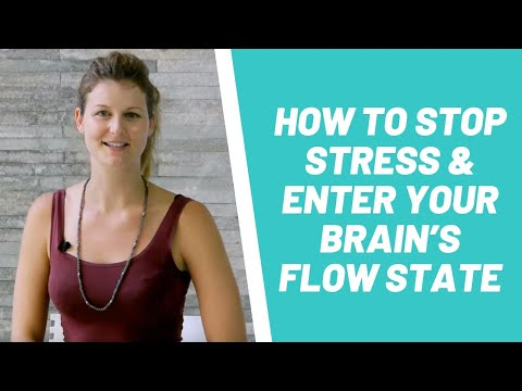 How To Stop Stress & Enter Your Brain's FLOW State With Dr Dani