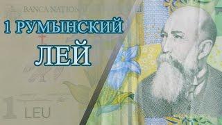 Пластиковая банкнота 1 румынский ЛЕЙ и обзор альбома для банкнот