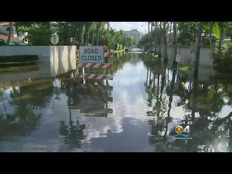 King Tides Are Leaving South Floridians Feeling All Wet