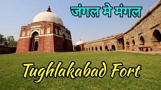 Best place for Photo Shoot/TUGHLAKABAD FORT /South Delhi