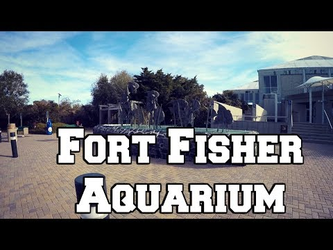 Fort Fisher Aquarium 2018 ~ VLOG