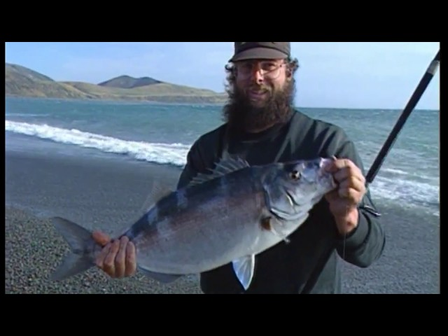 The Great Moki Hunt NZ - GONE FISHIN Blast from the Past