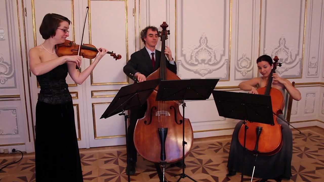 Michael Haydn: Divertimento (for violin, cello, double bass) - YouTube