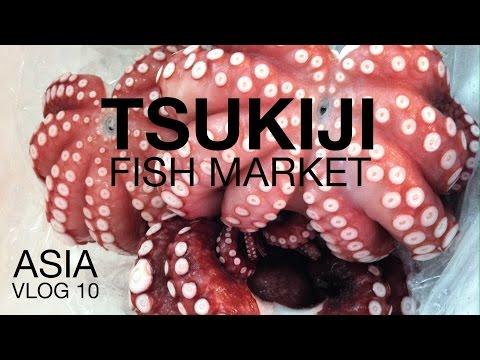 Asia Vlog 10: Tsukiji and Akihabara | Tokyo, Japan