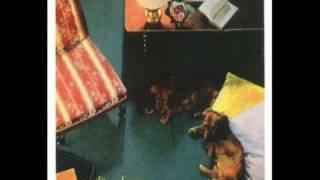 Ostzonensuppenwürfelmachenkrebs (OZSWMK) - Die Pest